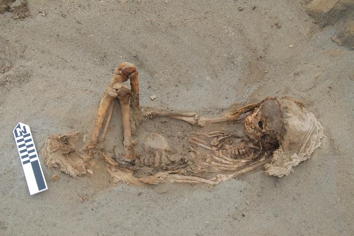 Крупнейшее жертвоприношение в Новом Свете: в Перу найдены останки сотен детей и животных с вырванным сердцем История, Археология, Южная Америка, Перу, Мезоамерика, Длиннопост