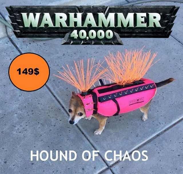 Гончая Хаоса Warhammer, Warhammer 40k, Хаос, Wh Humor