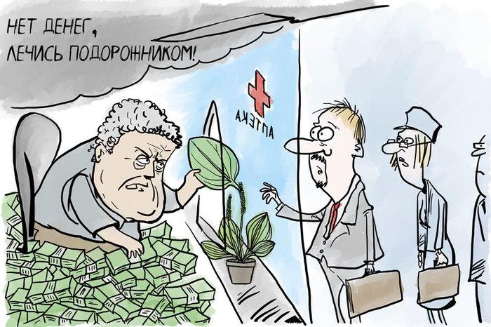 Пока бесплатно... Украина, Реформа, Медицина, Подорожник, Политика