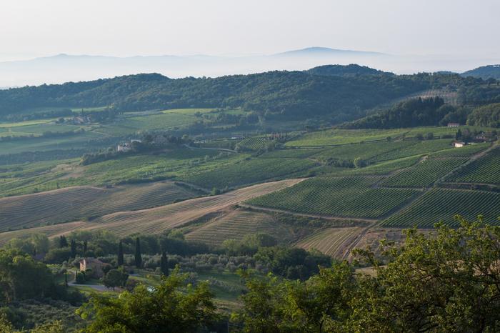Монтепульчано, Италия: город вина и бочек Путешествия, Италия, Вино, Длиннопост