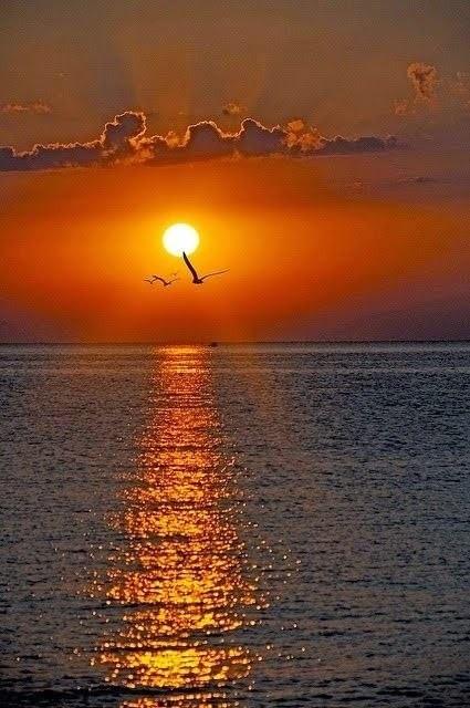 Закаты Закат, Природа, Вода, Красота природы, Длиннопост