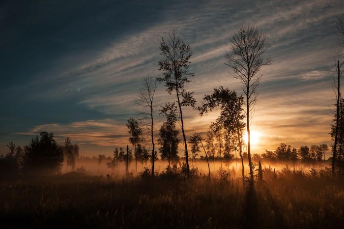 Комары и рассвет Рассвет, Фотография, Природа России