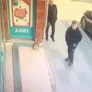 """По прозвищу """"Кусь"""""""