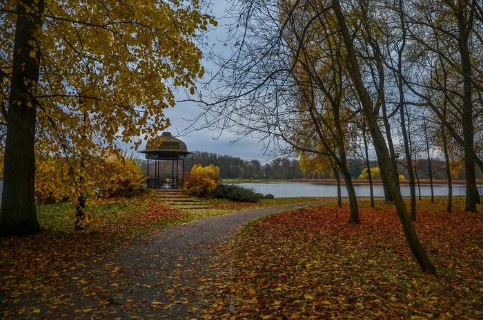 Частичка Беларуси Беларусь, Осень, Фотография, Длиннопост, Несвиж