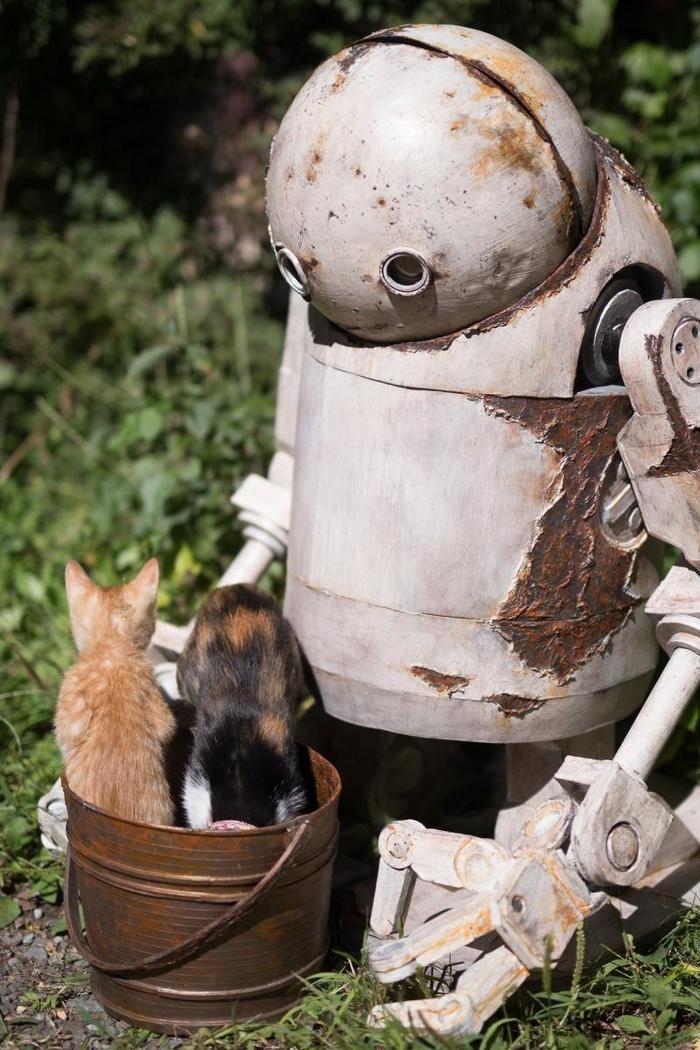 2 cats 1 bucket
