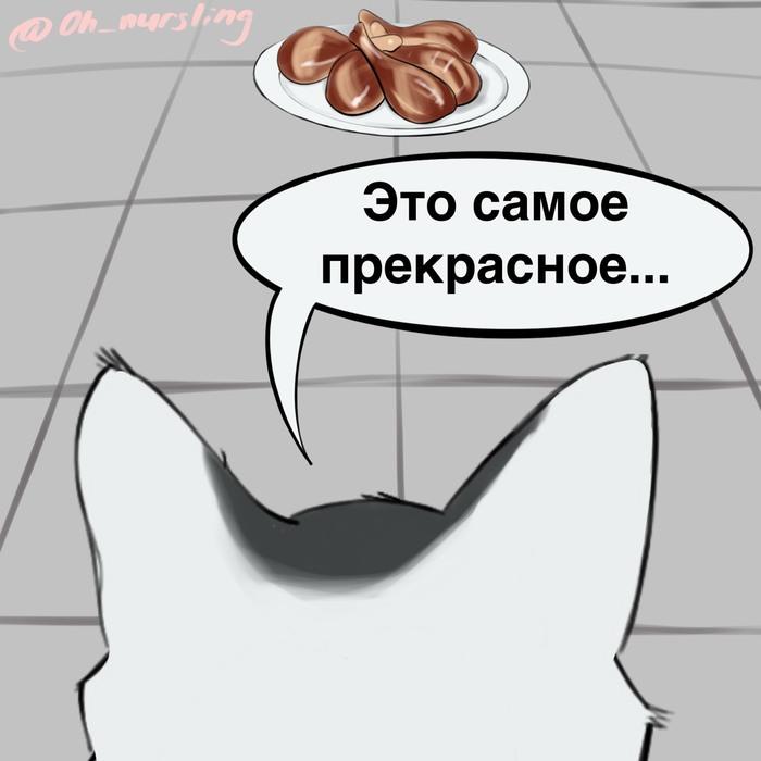 Кошачьи приоритеты Гифка с предысторией, Комиксы, Животные, Вор, Кот, Видео, Длиннопост