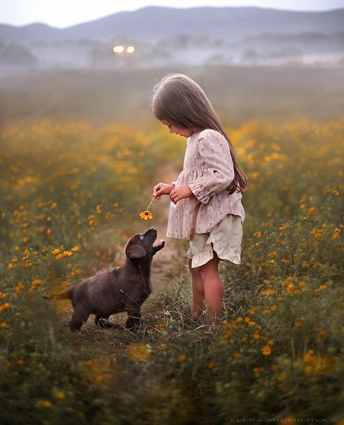 Малыши Фотография, Красивый вид, Девочка, Собака, Нежность, Природа, Дети