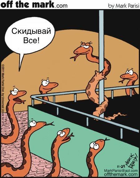 Змеи тоже любят развлекаться