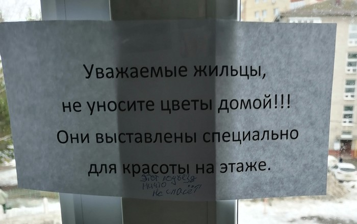 Диалог соседей Соседи, Подъезд