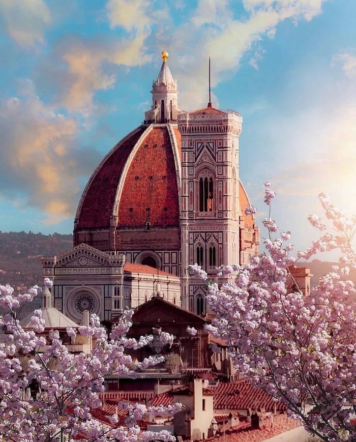 Весна друзья!!! Весна, Солнце, Хорошее настроение, Флоренция, Италия, Амстердам, Длиннопост, Фотография