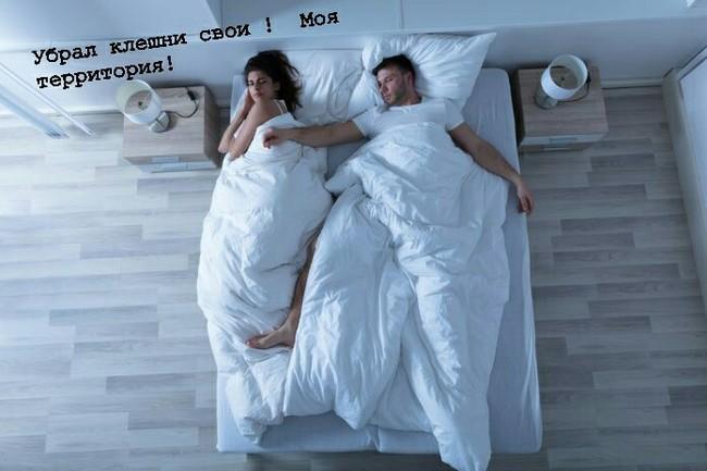 Развод из-за кровати. Кровать, Суд, Полиция, Развод