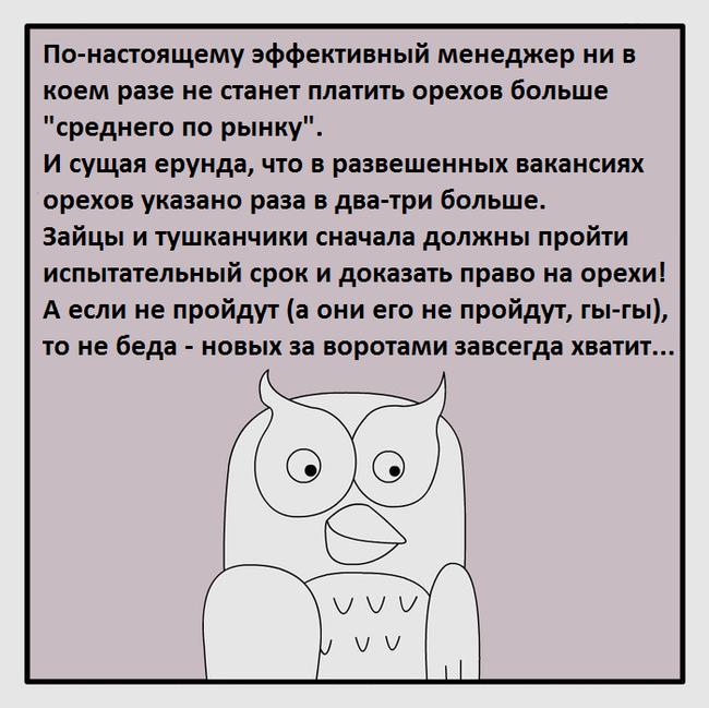 Вечный круговорот Фанфики об эффективной сове, Юмор, Работа