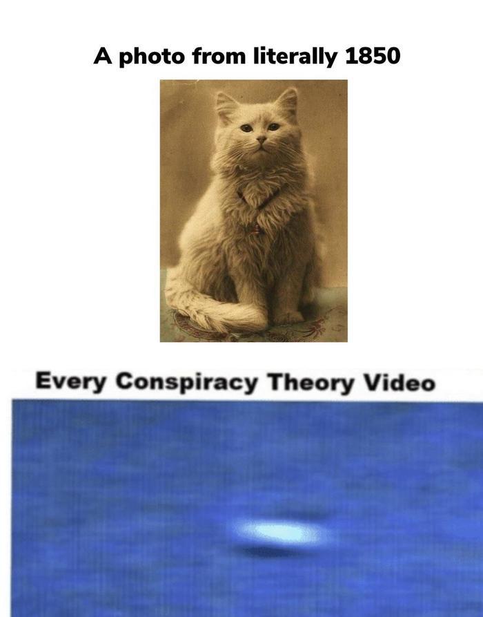 Каждый раз когда кто-то ловит НЛО на камеру Кот, НЛО, Конспирология, Мемы