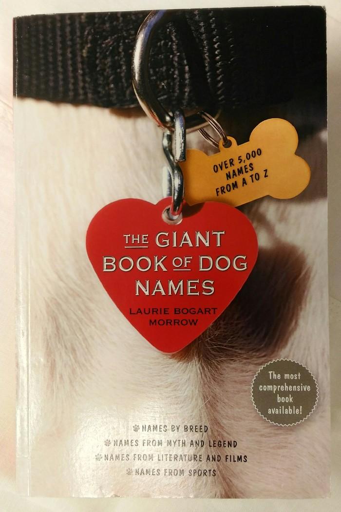 Выбираем кличку для собаки Длиннопост, Книги, Кличка, Собака, Английский язык