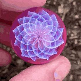 Цветок в стеклянном шаре