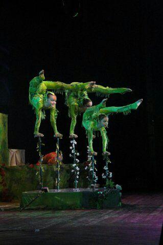 Как я ходила в цирк Цирк, Детство, Тренировка, Растяжка, Здоровье, Спорт, Гимнастика, Длиннопост