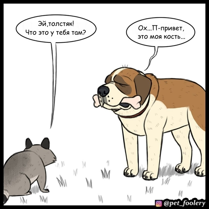 Брут и Пикси Брут и Пикси, Хьюго, Енот, Комиксы, Длиннопост, Собака, Pet Foolery