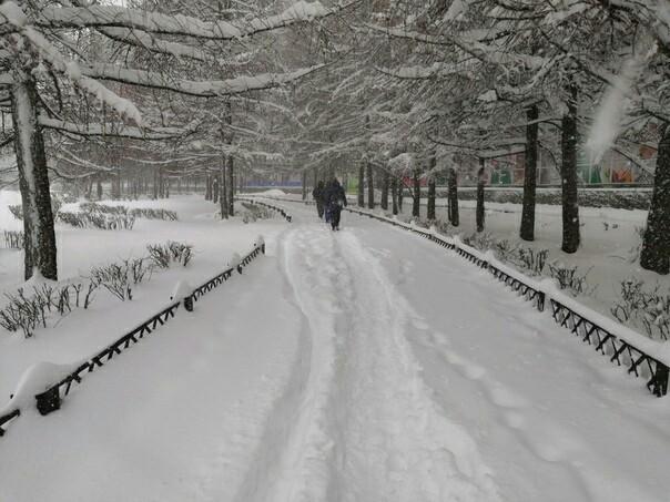 А у нас весна!!! Весна, Снег, Фотография, Северодвинск, Длиннопост