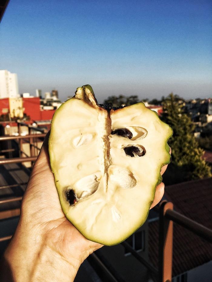 Любите ли вы фрукты так, как их люблю я? Мексика, Еда, Свежайшие фрукты, Дайте ещё, Длиннопост