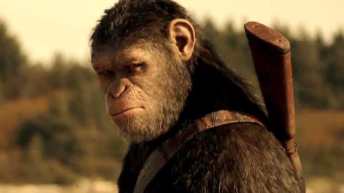 Планета обезьян в реальности. Планета обезьян, Новости