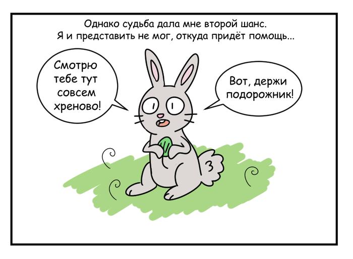 Благие намерения Животные, Комиксы, Природа, Длиннопост