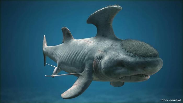 WTF, Evolution?! Рыба, Палеонтология, Находка, Длиннопост