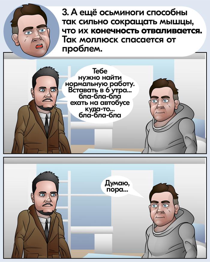 Осьминоги Наука, Биология, Осьминог, Анахорет, Длиннопост, Scitopus