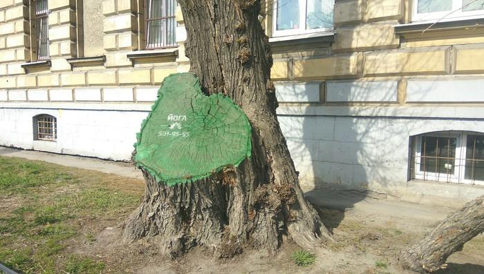 Руби деревья @ Занимайся йогой