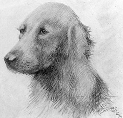 130 лет художнику Художник, Адольф Гитлер, Собака, Путин