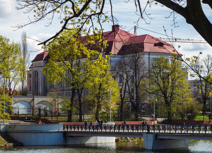 Когда погода даёт насладиться весной максимально - выжимай из неё все кадры! Калининград, Парк, Природа, Велопрогулка, Nex5t, Helios 44m, Длиннопост
