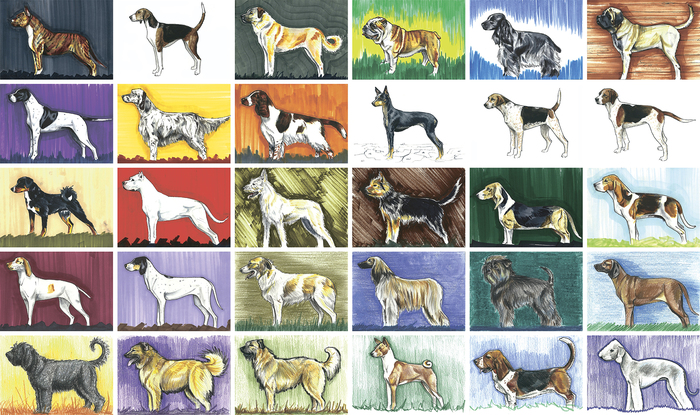 More than 365 dogs Длиннопост, Собака, Рисунок, Рассказ, Творчество, Жизнь
