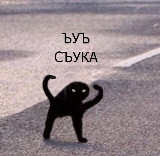 Парейдолия Парейдолия, Кот, Рисунок