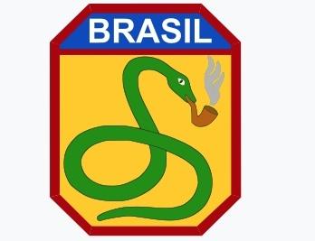 Когда змея закурит Бразилия, Поговорки, Змея