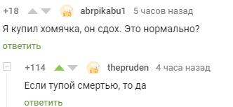 Хомячки Хомяк, Скриншот, Пикабу, Комментарии на Пикабу