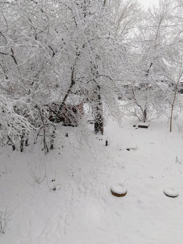 Весна, апрель, и солнце светит ярко.В листве зелёной пригород утоп.Всё это Краснодар, а я из Красноярска.Пойду усядусь задницей в сугроб