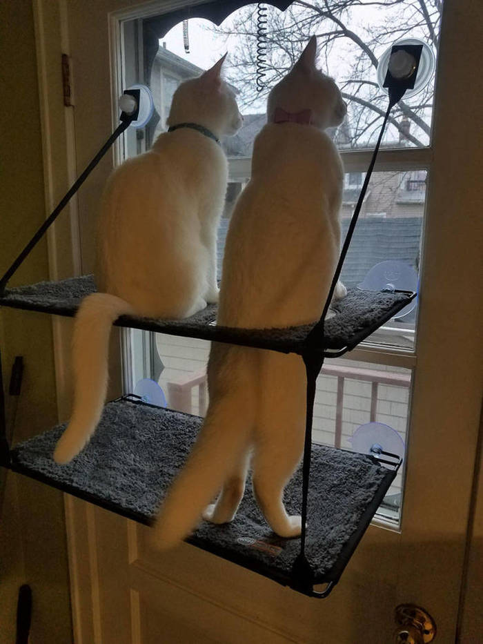 Что там такого интересного ?