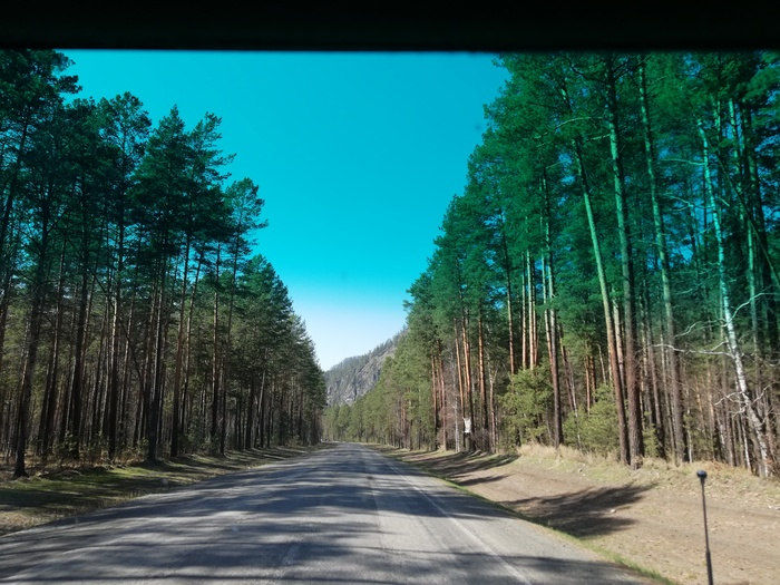 Весна на Алтае. Добро пожаловать в прекрасный край Горный Алтай, Маральник, Длиннопост