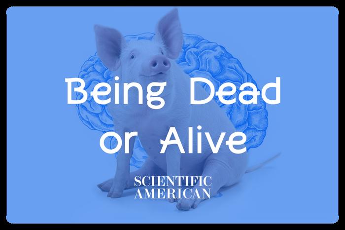 Ещё ближе к зомбиапокалипсису: система восстановления мозга исследует границы между мёртвым и живым Научные открытия, Scientific american, Мозг, Зомби-Апокалипсис, Наука, Медицина, Перевод, Длиннопост