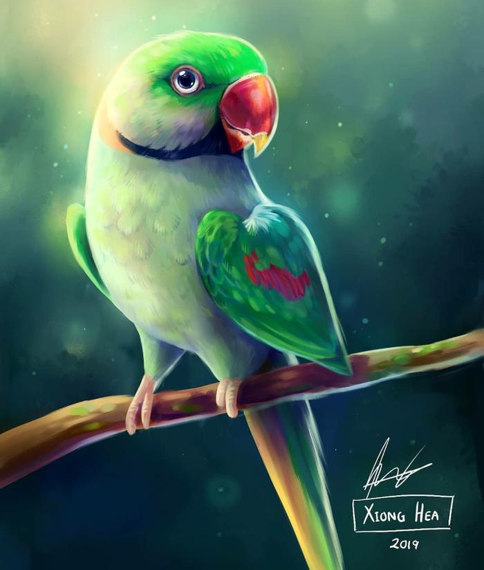 Прикольный арт. Няша, Птицы, Попугай, Арт