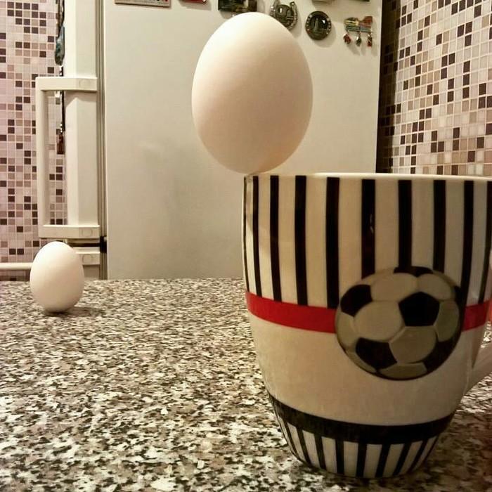 Когда стало скучно просто пить чай... Яйца, Равновесие, Кружка, Кухня, Делать нечего, Магия, Трюк, Баланс