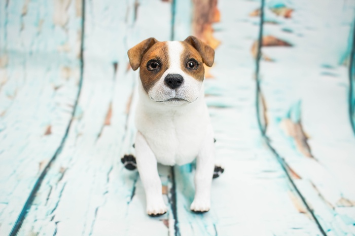 Джек Рассел пёс Авторская игрушка, Полимерная глина, Собака, Рукоделие без процесса, Длиннопост