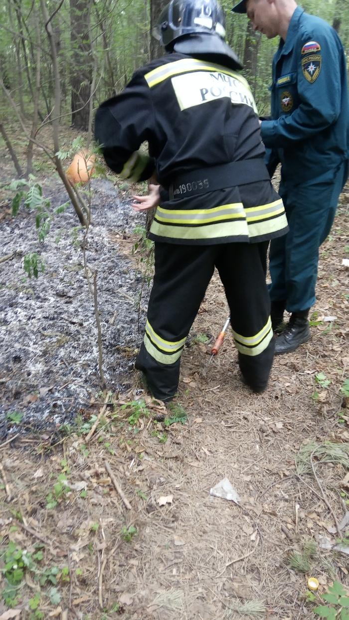 Спасли птичий дом Пожар, Огонь, Пожарная безопасность, Ижевск, Длиннопост, Без рейтинга