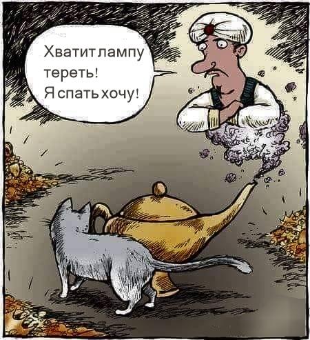 Не все любят котиков.