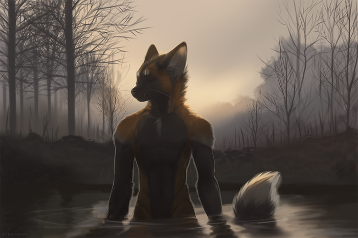 Suave Фурри, Furry Art, Furry Fox, Koul Fardreamer