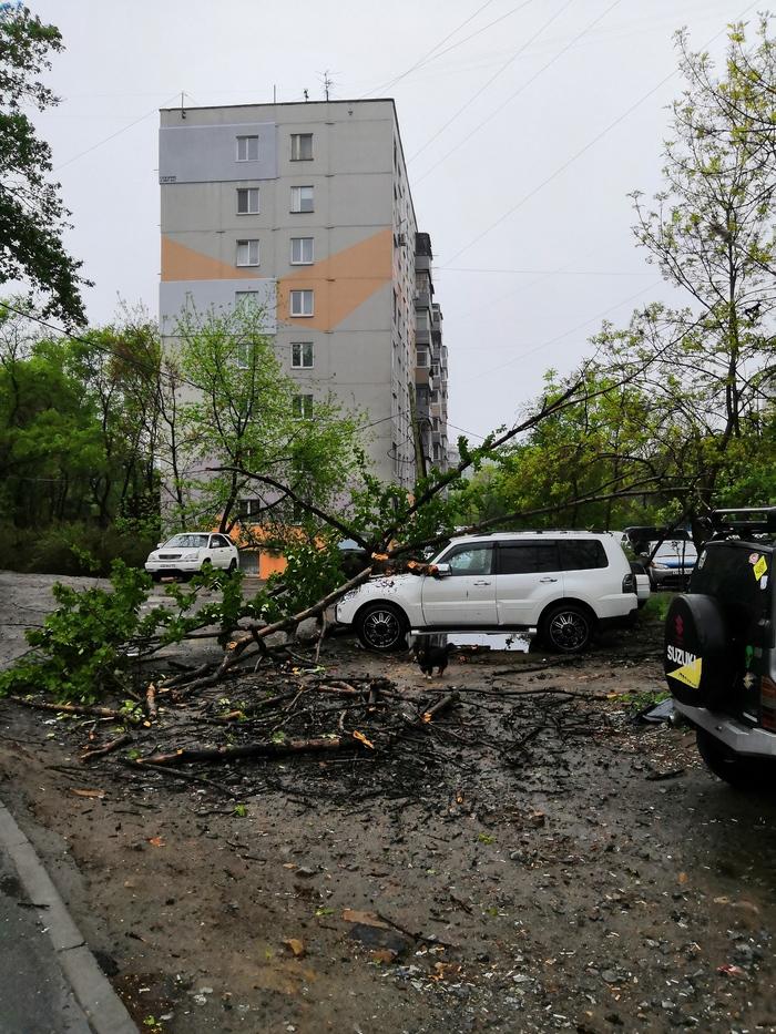 Во Владивостоке плохая погода Дождь, Машина, Повреждение имущества, Длиннопост