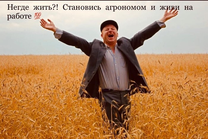 Простое решение жилищной проблемы Профессия, Сельское хозяйство, Образ жизни, Работа, Юмор