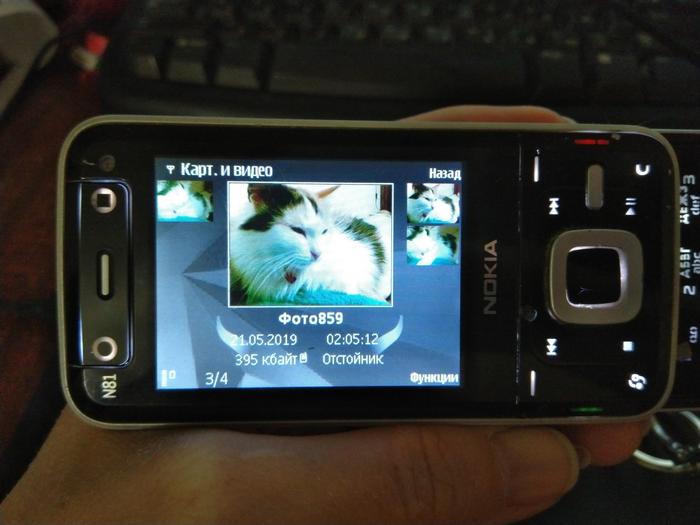 Nokia N81 Телефон, Nokia, Раритет, Symbian, Ностальгия, Слайдер, Длиннопост, Кот
