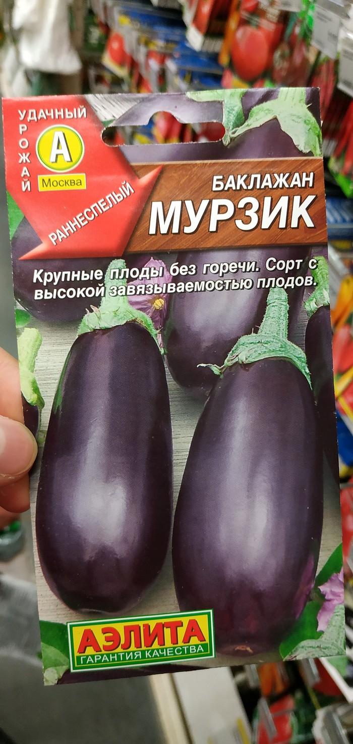 Баклажан Мурзик Дача, Семена, Баклажан