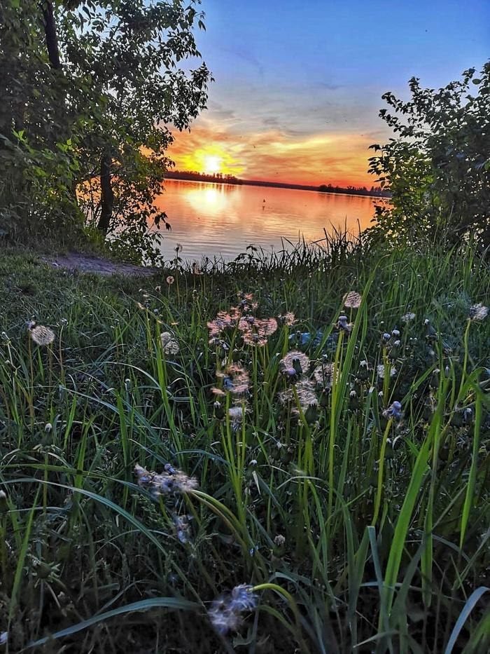 Озёра и болота Шатуры Начинающий фотограф, Озеро, Закат, Болото, Длиннопост