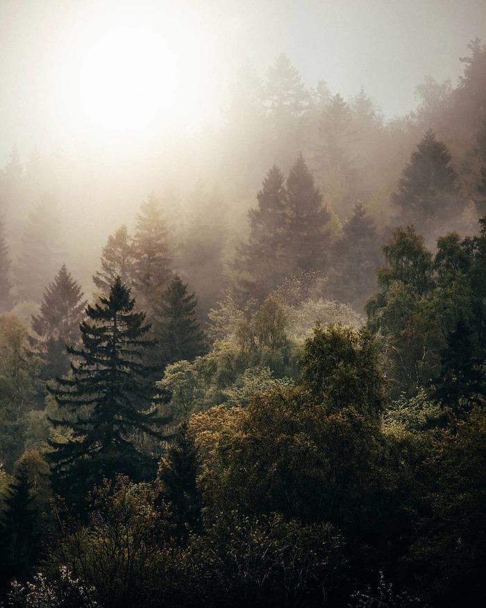 Швеция Фотография, Красота, Красота природы, Швеция, Длиннопост